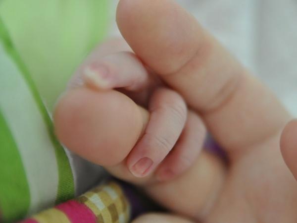 eine Babyhand und zwei Finger einer Hand